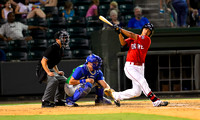 Greenville Drive - Red Sox Farm Team